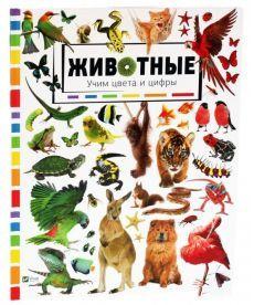 Животные Учим цвета и цифры