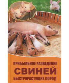 Прибыльное разведение свиней быстрорастущих пород
