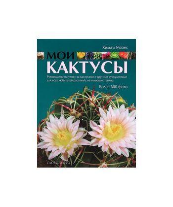 Мои кактусы  - Фото 1