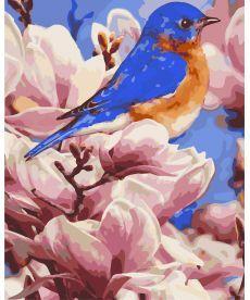 Картина по номерам Яркая птичка 40 х 50 см (AS0279)