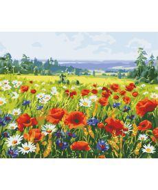 Картина по номерам Поле цветов 40 х 50 см (AS0546)