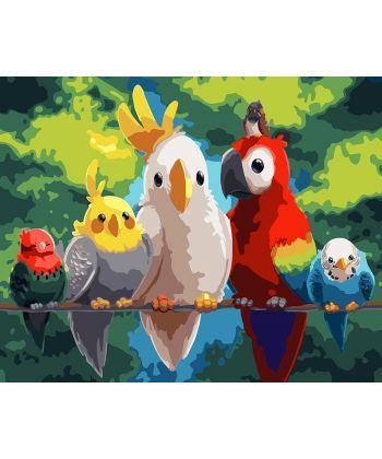 Картина по номерам Попугайчики 40 х 50 см (BK-GX24310)