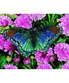 Картина по номерам Тропическая бабочка 40 х 50 см (GZS1032)