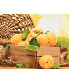 Картина по номерам Золотистый абрикос 40 х 50 см (KH5565)