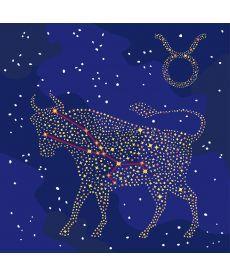 Картина по номерам Знак зодиака Телец (с краской металлик) 50 х 50 см (KH9507)