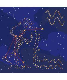 Картина по номерам Знак зодиака Водолей (с краской металлик) 50 х 50 см (KH9509)