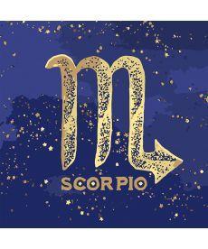 Картина по номерам Знак зодиака Скорпион (с краской металлик) 50 х 50 см (KH9513)