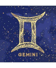 Картина по номерам Знак зодиака Близнецы (с краской металлик) 50 х 50 см (KH9518)