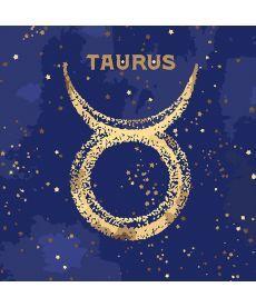 Картина по номерам Знак зодиака Телец (с краской металлик) 50 х 50 см (KH9519)