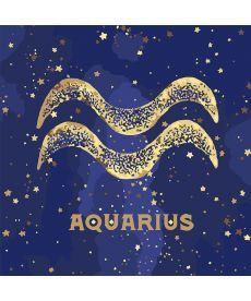 Картина по номерам Знак зодиака Водолей (с краской металлик) 50 х 50 см (KH9521)