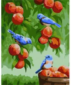 Картина по номерам Дрозды и персики 30 х 40 см (KHO2429)