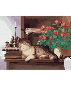 Картина по номерам Домшний любимец 30 х 40 см (KHO2441)