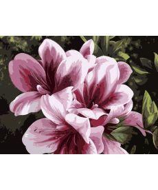 Картина по номерам Розовая лилия 30 х 40 см (KHO2911)