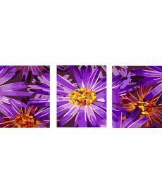 Картина по номерам Фиолетовые цветы Триптих 50 х 120 см (PX5125)