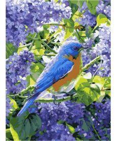 Картина по номерам Птичка на сирени 30 х 40 см (VK220)