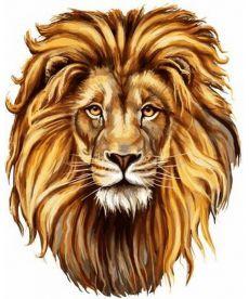 Картина по номерам Царственный лев 40 х 50 см (VP1017)