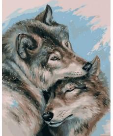 Картина по номерам Влюбленные волки 40 х 50 см (VP1129)