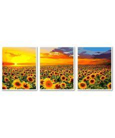 Картина по номерам Триптих Поле подсолнухов Триптих 50 х 120 см (VPT041)