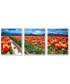 Картина по номерам Триптих Поле тюльпанов Триптих 50 х 120 см (VPT042)