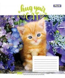 Тетрадь в клетку 18 л. 1 Вересня А5 Hug Your Cat 762299