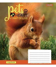 Тетрадь в линию 48 л. 1 Вересня А5 Pets heart 762716