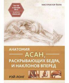 Анатомия асан, раскрывающих бедра, и наклонов вперед