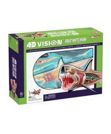 4D Master Объемная анатомическая модель Большая белая акула