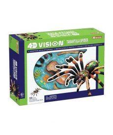 4D Master Объемная анатомическая модель Паук тарантул