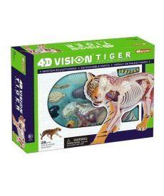 4D Master Объемная анатомическая модель Тигр