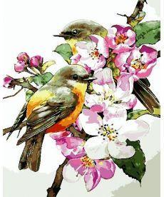 Картина по номерам Птицы на ветке 40 х 50 см (AS0722)
