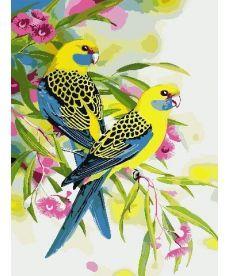 Картина по номерам Попугаи на ветке 30 х 40 см (AS0783)