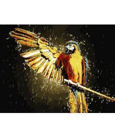 Картина по номерам Взмах крыла 50 х 65 см (AS0835)