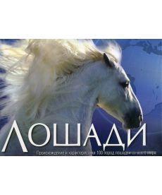 Лошади. Происхождение и характеристики 100 пород лошадей со всего мира