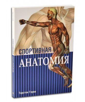 Спортивная анатомия  - Фото 1