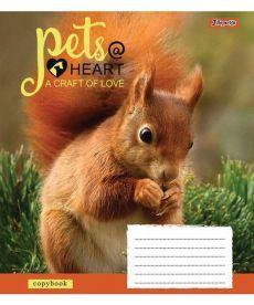 Тетрадь в линию 12 л 1 Вересня А5 Pets heart микс 4 обложки (761782)