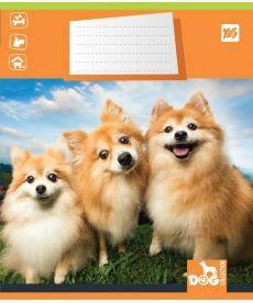 Тетрадь в линию 12 л Yes А5 DOG COLLECTION микс 4 обложки (761370)