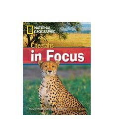 FRL2200 B2 Cheetahs in Focus! with Mulri-ROM