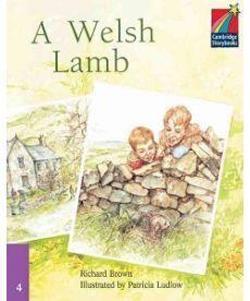 CSB 4 A Welsh Lamb