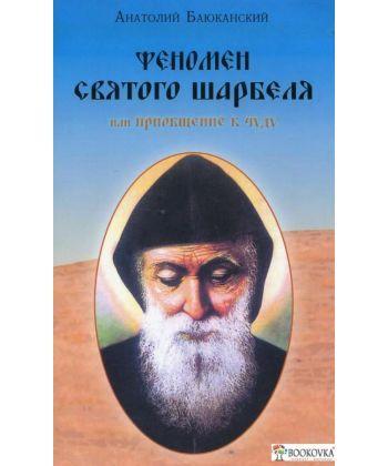 Феномен святого Шарбеля, или Приобщение к чуду  - Фото 1